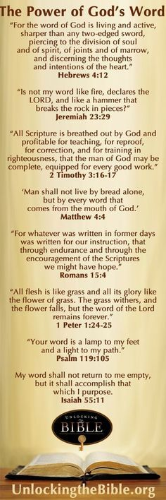 """""""SO LET US FILL THE STOREHOUSE OF OUR MIND WITH THE TREASURE OF GOD'S WORD.  Every day offers opportunities. When we go to bed tonight, let us think, 'What treasure did I put in my storehouse today?'"""" ~ Amy Carmichael by effie"""