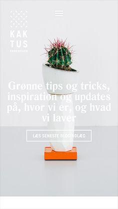 .○Oo. Con Gas .oO○. | Kaktus København