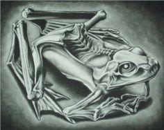 mumified frog mc escher 1946 s Mc Escher, Escher Kunst, Escher Art, Escher Prints, Escher Paintings, Plastic Art, T Art, Art Database, Gravure