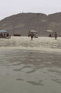 beach, tide, jump, fail GIF