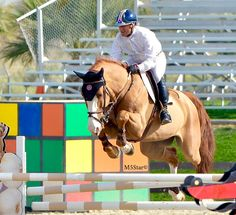 Malibu 5Star Naturals Ambassador Rider Mark Watring & Baylon at Thermal VI 2016. Photo by Wendy Gleason/Malibu5starnaturals.com