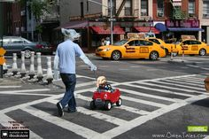"""Baby Owen from """"Strollin' with Little Baby Owen""""  Available on the Apple iTunes iBookstore. (Doesn't Cal look great?) Secret Photo, American Sign Language, Little Babies, Itunes, New Books, Looks Great, Nyc, Apple, Future"""