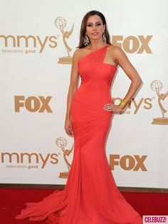 Sofia Vergara should be an ideal body shape for models, not stick thin, shapeless women who look 12! I love her