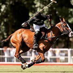 Polo player Facundo Pieres with Ellerstina