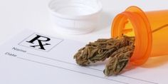 Tips on Advocating for your State Medical Cannabis Program - National Pain Report