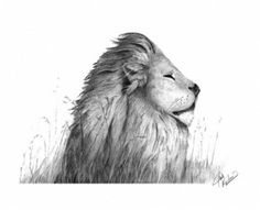 This lion. But looking up and a little darker outline with red and orange accents under the chin and in the mane.