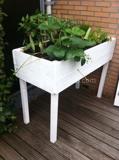 A table made from recycled pallets to grow herbs.    Idea sent by Ernest Broekstra !