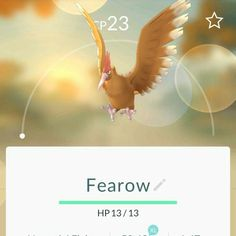 #022 - Fearow Type: Normal / Flying