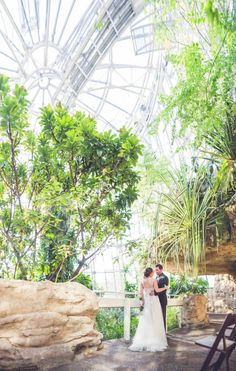Houston Museum of Natural Science, wedding venue