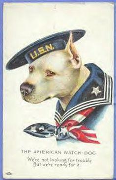 vTg WWI American Watch Dog US Navy uniformed Bull Terrier pit patriotic postcard Pin Ups Vintage, Vintage Dog, Go Navy, Navy Mom, Navy Life, Vintage Printable, Gato Animal, Les Fables, Nanny Dog