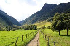 Sitios turísticos del Quindío: Salento y el valle del Cocora - http://revista.pricetravel.co/vive-colombia/2015/10/09/sitios-turisticos-quindio-salento-valle-cocora/