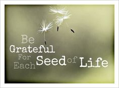 """This """"Gratitude Post: 1963"""" is written so beautifully. By. Jeffon Seely"""