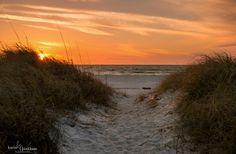 https://flic.kr/p/FwABJg | beach path - explored