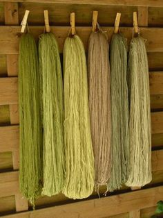 "A german dyer has a nice post about her experiences dyeing with a ""reed flower"" and rain water. She got some lovely greens"