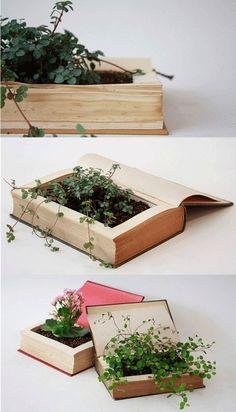 Books turned planters. Would only be able to do this to an old book or one I don't care to ruin.