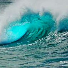 The beautiful oceans wave