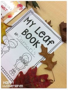 We're Going on a Leaf Hunt Activity Book! Fall Activities!