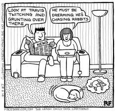 Mesmerizing Training Your Dog Proven, Useful Hints And Tips Ideas. Remarkable Training Your Dog Proven, Useful Hints And Tips Ideas. Dog Jokes, Funny Dog Memes, Funny Dogs, Dog Funnies, Funny Animal Pictures, Funny Animals, I Love Dogs, Cute Dogs, Dog Comics