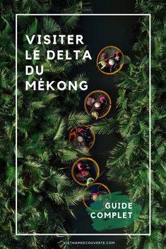 Situé dans l'extrémité sud du Vietnam, le delta du Mékong est une destination idéale pour les adeptes de la nature. Visiter le delta du Mékong, c'est tout particulièrement découvrir la vie quotidienne sur l'eau des populations locales. #vietnam #vietnamdecouverte #nature #voyage #visitevietnam #green #travel #vietnam #travel #landscape #vietnamtravel #tourism #photography #destination #asia #southeastasia #indochina #holidays #sunset #diy #bts #deltaduMekong Ho Chi Minh Ville, Delta Du Mekong, Destinations, Spots, Land Scape, Nature, Movie Posters, Water, World