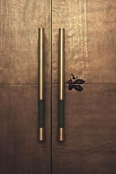 Handles: Radisson Hotel-Door Detail