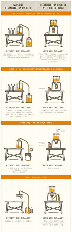 The Catalyst - Beer Fermentation Made Easy by Craft a Brew — Kickstarter