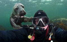 13 grandiosos selfies con animales