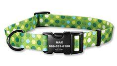 Orvis Green Polka Dot Dog Collar — Cute collar for St. Patrick's Day