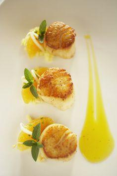 31 Super Ideas for wedding food seafood seared scallops Shellfish Recipes, Seafood Recipes, Gourmet Recipes, Cooking Recipes, Gourmet Appetizers, Sushi Recipes, Gourmet Desserts, Gourmet Foods, Food Plating Techniques