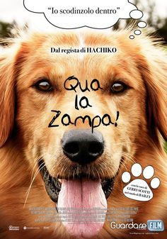 Qua la zampa! Streaming (2017) HD/ITA Gratis | Guardarefilm: http://www.guardarefilm.me/streaming-film/10679-qua-la-zampa-2017.html