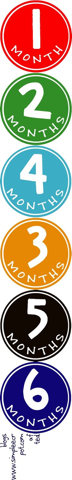 free monthly onesie printable stickers