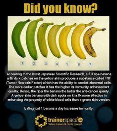 Anti-cancer benefits of bananas