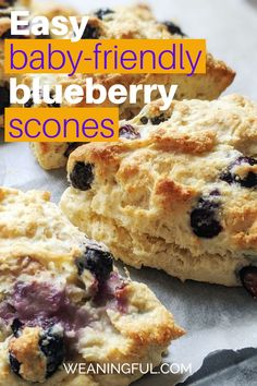 If you're looking for quick breakfast ideas for kids, including small babies who just started solids, then this quick scones recipe is the perfect way to start the day. Sweetened only with fruit, it's nutritious and easy, as well as great finger food when introducing solids at 6 months+ Kid Meals, Meals For One, Easy Meals, Healthy Meals For Kids, Easy Healthy Recipes, Baby Food Recipes, Baby First Foods, Baby Finger Foods, Baby Weaning