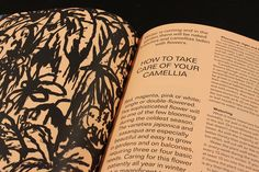 The Plant by magCulture, via Flickr