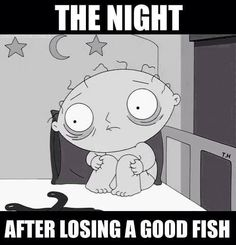 The NIght After Losing a Good Fish