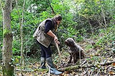 Truffle Hunter show you how to find truffles walking in the woods, how to use them in the best way,giving all the secrets, and how to cook and enjoy them