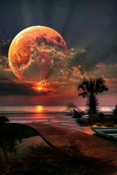 The beauty of nature awesome Beautiful Moon, Beautiful World, Shoot The Moon, Science And Nature, Nature Pictures, Pictures Of The Beach, Amazing Nature, Belle Photo, Night Skies