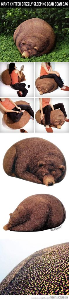 Take my money and my soul…Grizzly bean bag