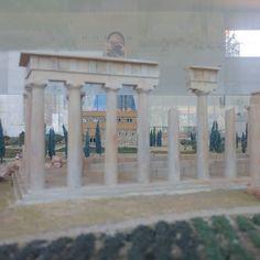 Το αρχαιολογικό μουσείο της Νεμέας είναι από τα καλά. Για ελληνικό μουσείο δηλαδή αρκετά προηγμένο. Όχι από τα πολύ βαρετά και παλιομοδίτικα μάλλον λόγω των Αμερικανών που εξ αρχής ασχολήθηκαν και επιχορήγησαν τα πάντα στην περιοχή. Έχω πάει 4 ή 5 φορές τα τελευταία χρόνια και όλοι περνάμε καλά. Βγήκα ως συνήθως με καλή διάθεση να κάνουμε μια βόλτα και στα αρχαία που είναι εκτός μουσείου.  Η ζέστη αφόρητη. Είχα δώσει την ομπρέλα που πάντα με συντροφεύει για τον ήλιο στην κόρη μου και η…