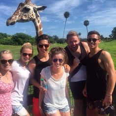 So this time 2 weeks ago 😩 we were having selfies with a giraffe , it's now raining and I'm on the way to work #takemeback #florida ☀️