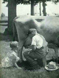 I remember milking the cows at my aunt and uncle's house growing up