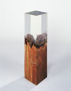 Vera Röhm (plexiglass and wood).the only thing that would make this hotter is if were STEUBEN instead of plexiglass. Wood Resin, Resin Art, Wood Sculpture, Sculptures, Deco Design, Wood Art, Decoration, Wood Projects, Glass Art