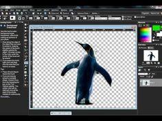 Paint Shop Pro ( combining pictures)