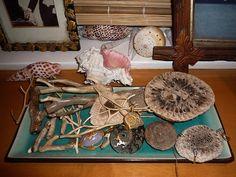 Cathy Waterman's studio
