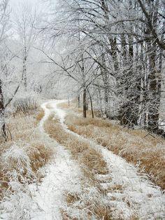 Winter Magic, Winter Snow, Winter Christmas, Winter Road, Winter Walk, Country Christmas, Winter's Tale, Winter Scenery, Snow Scenes