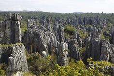 Stone Forest, China - The tall rocks give the illusion of petrified trees, which is where the name shilin — or stone forest — comes from.
