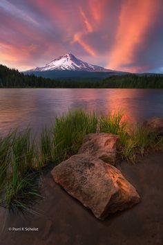 Pretty in Pink by Perri Schelat ~ Mount Hood, Oregon*