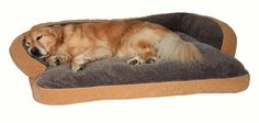 Floppy Ears Design Microfiber and Fleece Surround Bolster Dog Bed