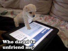 Who Dared To Unfriend Me!  FUNNY!
