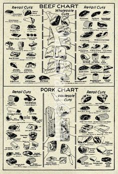 Vintage butcher chart, beef and pork meat
