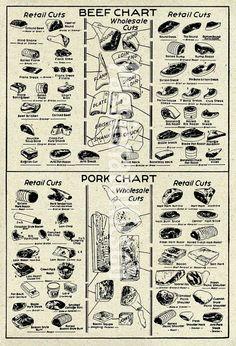 Vintage butcher chart, beef and pork meat
